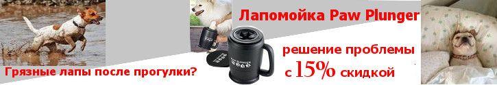 http://www.petsovet.ru/upload/medialibrary/59c/lapomoiki%20(2).jpg