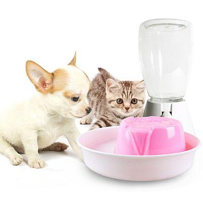 http://www.petsovet.ru/upload/medialibrary/7ef/1.jpg