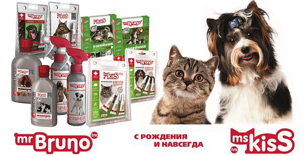 http://www.petsovet.ru/upload/medialibrary/a6b/1.jpg