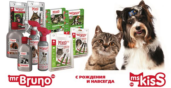 [img]http://www.petsovet.ru/upload/medialibrary/a6b/1.jpg[/img]