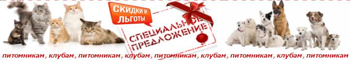 http://www.petsovet.ru/upload/medialibrary/ada/pitomnikam.jpg