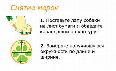 http://www.petsovet.ru/upload/medialibrary/c6e/%D0%A1%D0%BD%D1%8F%D1%82%D0%B8%D0%B5%20%D0%BC%D0%B5%D1%80%D0%BE%D0%BA.jpg